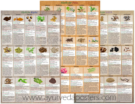 Dosha Herbology set 11x17
