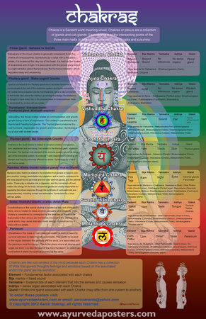 chakra poster with asanas for each chakra\\n\\n3/18/2015 7:57 PM