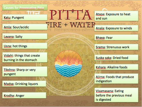Pitta Power Point Presentation