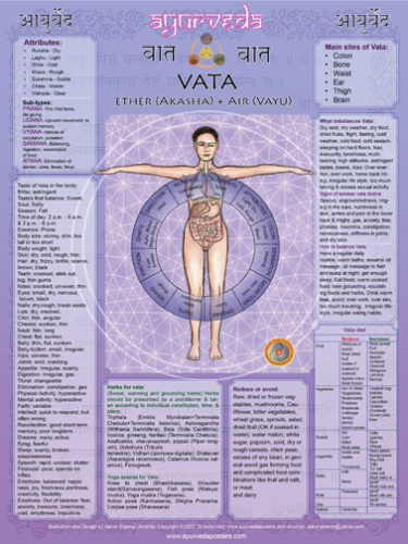 Vata poster extra large 18x24 inch