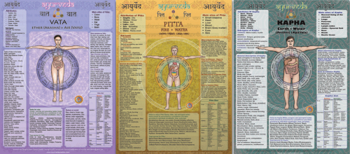 Dosha set large vata, pitta, kapha chart package